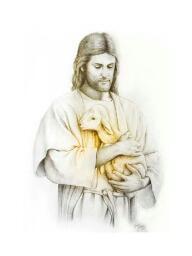 Bild meines Neffen. Das verlorene Schaf