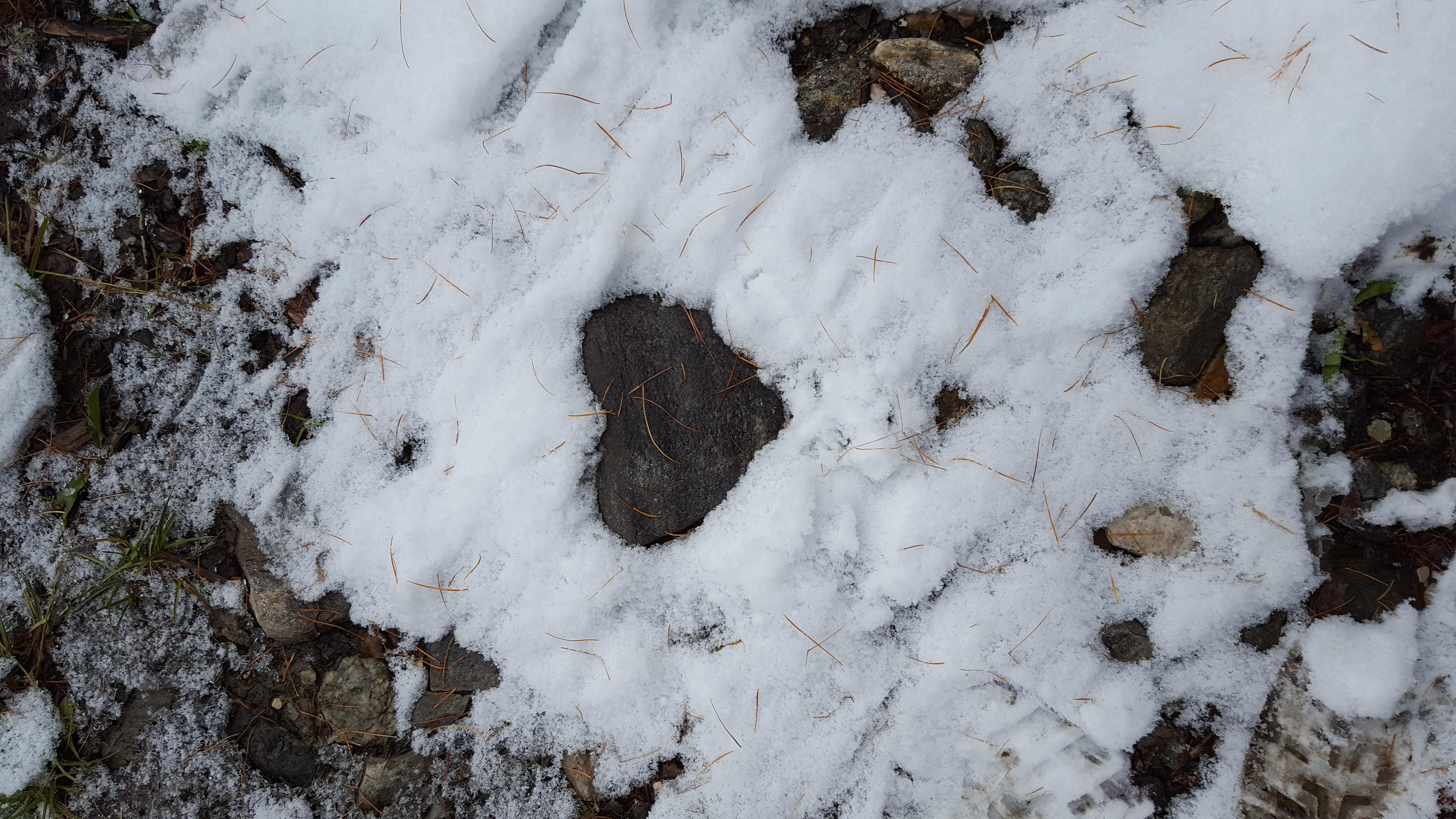 ein Herz im Schnee